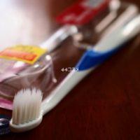 シュミテクト やさしく歯周ケアハブラシ コンパクト